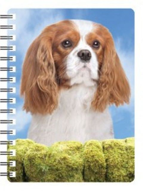 Cavalier Blenheim 3D Notebook